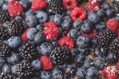 Mieszane jagody, czarna jagoda, malinka Zdjęcie Royalty Free