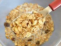 mieszane zboża śniadaniowych mleko. Zdjęcie Stock