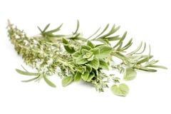 mieszane zioła Fotografia Stock