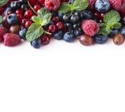 Mieszanek jagody na białym tle Jagody i owoc z kopii przestrzenią dla teksta Błękitny i czerwony jedzenie Dojrzałe czarne jagody, Obrazy Stock