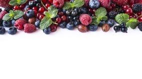 Mieszanek owoc jagody na białym tle Dojrzali rodzynki, malinki, czarne jagody, gooseberrie, czernicy z nowym liściem słodki Obrazy Stock