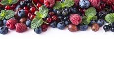 Mieszanek owoc jagody odizolowywać na białym tle Dojrzali rodzynki, malinki, czarne jagody, gooseberrie, czernicy z mennicą le Fotografia Royalty Free