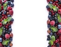 Mieszanek owoc jagody odizolowywać na białym tle Dojrzali rodzynki, malinki, czarne jagody, gooseberrie, czernicy z mennicą le Zdjęcia Stock