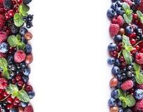 Mieszanek owoc jagody odizolowywać na białym tle Dojrzali rodzynki, malinki, czarne jagody, gooseberrie, czernicy z mennicą le Obrazy Stock