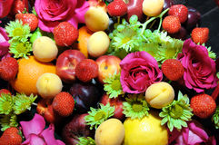 mieszanek owoc tło Zdjęcie Stock