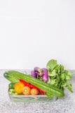 Mieszanek Tropikalni warzywa VII Obraz Stock