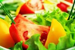 mieszanek warzywa Fotografia Stock