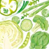 mieszanek zieleni warzywa Zdjęcia Royalty Free