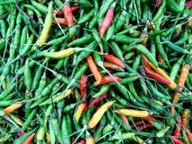 Mieszani chili pieprze obrazy royalty free