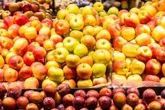 Mieszani jabłka Zdjęcie Stock