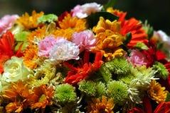 Mieszani kwiaty Obrazy Stock