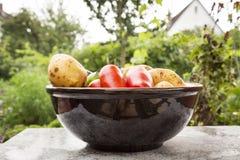 Mieszani organicznie warzywa w pucharze Zdjęcia Stock