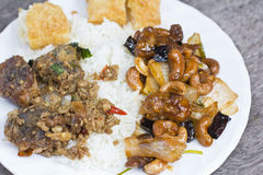 Mieszani Tajlandzcy ryż i curry Zdjęcie Royalty Free