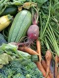 mieszani warzywa Obrazy Royalty Free