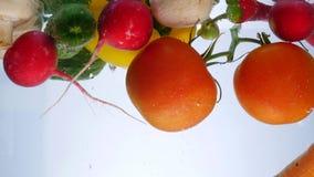 Mieszani warzywa mieszają wewnątrz wodę Dzwonkowy pieprz, pomidory, ogórek i rzodkiew, zdjęcie royalty free