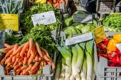 Mieszani warzywa z marchewkami i leek Fotografia Royalty Free