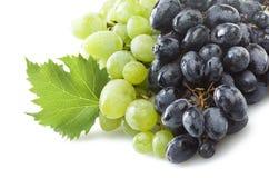 Mieszanka świeżości winogrono zdjęcie royalty free