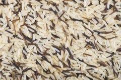 Mieszanka dzicy i biali ryż Obrazy Royalty Free