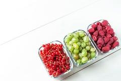 Mieszanka jagody na białym tle Obrazy Stock