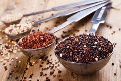 Mieszanka quinoa adra w metal pomiarowych łyżkach Obraz Stock
