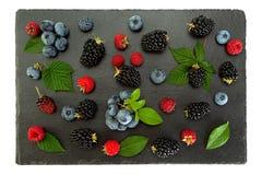 Mieszanki jagoda z liściem zdjęcie royalty free
