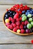 Mieszanki lata jagody na talerzu Obraz Royalty Free