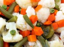 mieszanki warzywo Obraz Stock