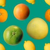 Mieszany cytrus owoc bezszwowy wzór Zdjęcia Royalty Free