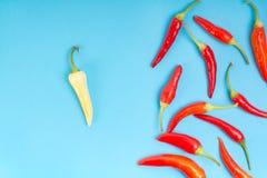 Mieszany koloru chili pieprzu tło obraz royalty free