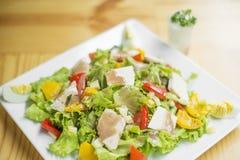 Mieszany kurczaka sałatkowy talerz zdjęcie stock