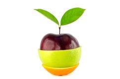 Mieszany Owocowy czerwony jabłko - zielona appleand pomarańcze Zdjęcie Stock