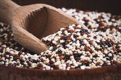 Mieszany surowy quinoa fotografia stock
