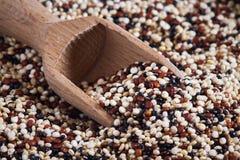 Mieszany surowy quinoa zdjęcie royalty free