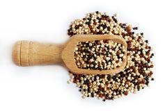 Mieszany surowy quinoa zdjęcie stock