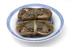 mieszkają półkowego Shanghai kraby Obraz Royalty Free
