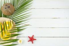 Mieszkania nieatutowy lato jest nadchodzącym pojęciem Tropikalnych owoc koks i świeże pomarańcze pod drzewko palmowe gałą obrazy stock