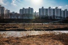 Mieszkania rzeką zdjęcia stock
