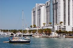 mieszkania własnościowego plażowy powikłany marina Miami obrazy stock