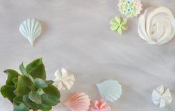 Mieszkanie cukierku nieatutowej prostej organicznie bezy pastelowy deser i succul Fotografia Stock