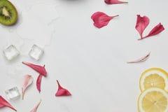 mieszkanie kłaść z kwiatu płatków, kostek lodu, cytryny i kiwi kawałkami na białym tabletop, obraz royalty free
