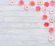 Mieszkanie kwiatów nieatutowa rama Zdjęcia Royalty Free