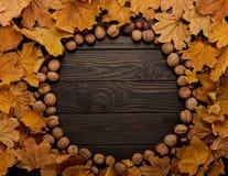 Mieszkanie nieatutowa rama jesieni dokrętki na drewnianym tle i liście Zdjęcie Stock