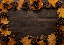 Mieszkanie nieatutowa rama liście, rożki i dokrętki na drewnianym plecy jesieni, Fotografia Royalty Free