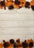 Mieszkanie nieatutowa rama liście, rożki i dokrętki na drewnianym plecy jesieni, Obraz Stock