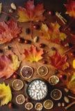 Mieszkanie nieatutowy domowej roboty kakao z marshmallows, pikantność, jesień liśćmi i kasztanami, zdjęcie stock