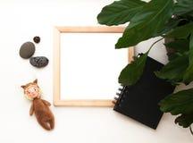 Mieszkanie nieatutowy egzamin próbny w górę, odgórny widok, drewniana rama, zabawkarska wiewiórka, roślina, nutowy ochrania fotografia royalty free