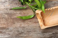Mieszkanie nieatutowy skład z bambusowymi kija i akupunktury igłami obrazy royalty free