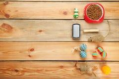 Mieszkanie nieatutowy skład z kotów akcesoriami Zdjęcia Stock