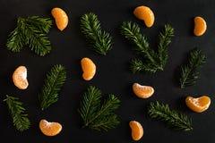 Mieszkanie nieatutowy wzór pomarańczowi mandarynka plasterki i małe jedlinowe gałąź na zmroku textured tło obrazy stock