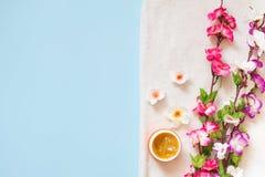 Mieszkanie nieatutowy zdroju koloru i śmietanki kwiaty na białym ręczniku na błękitnym tle, kopii przestrzeń zdjęcia royalty free